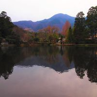 湯布院で定番人気スポット巡り〜湯の岳庵さんでランチを頂き金鱗湖を散策しました。