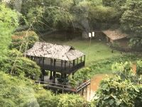 象マホート体験
