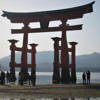宮島に一泊して桜満開の厳島神社周辺をゆっくり見る(2008年4月)