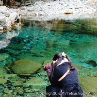 高知と室戸岬で絶景とグルメを堪能する旅