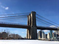 大寒波から帰還☆ニューヨーク シティとウェストチェスターの旅