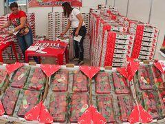 地球の裏で、【アチバイア市:花といちご祭】を訪問する、そして最後は「お相撲(SUMO)編」 #4(アチバイア市/サンパウロ州/ブラジル)