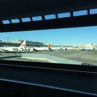 2018年始休み 成田空港からコタキナバルへ ネクサスリゾート泊 コタキナバル家族旅行記 �