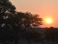 Mrs.kirinのアフリカ紀行 (15)チョベ国立公園サファリツアー