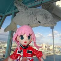 ようこそ2018、年越し旅行の延長戦だヨ! 3日目・大阪市内散策�