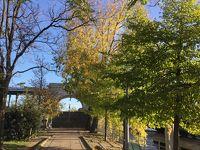 初秋のパリ