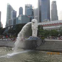 シンガポール夫婦旅 3日目・帰国日