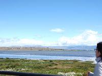 【アルゼンチン旅行記�】アルヘンティーノ湖でちょっとサイクリング ブエノスアイレスへ
