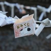 新春 旅行初めは鬼怒川温泉、平成の大修理が終わり輝きを取り戻した日光東照宮陽明門を見に行きました