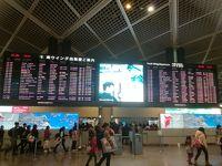 修行復活?いえいえ誕生日フライトリベンジするも観光なし ANAシンガポールビジネスクラス