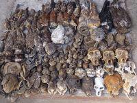 (38)2018年GW西アフリカ8日間(3)トーゴ(ロメ(ブードゥー市場 独立広場 国立博物館))