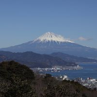 いちごと富士山で冬がベストシーズン?東京からぷらっとこだまで日帰り静岡の旅