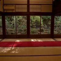 京都紅葉三昧(1)南禅寺・永観堂・哲学の道・安楽寺・銀閣寺・東寺ライトアップ