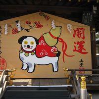 京都で健康祈願