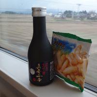 【列車でつなごう、フォートラ駅伝】30時間耐久!!特急乗り継ぎ旅。今年も春から乗りっぱなし。(復路編その2 完結)