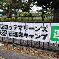 九州沖縄縦断の旅 7日目(最終日) 石垣ー東京