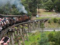 ヤラバレーワイナリー&パッフィンビリ蒸気機関車1日ツアー(ワイナリー巡り編)
