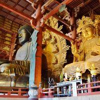 イギリス人観光客の日本観光 in 関西とか Part 3 - 奈良なら鹿でしょう