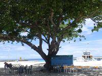 UA特典旅行 シュークリア!モルディブ旅行記2 ローカル島ウクラスの滞在