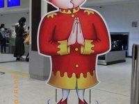 UA特典旅行 ナマスカール!モルディブ旅行記7 インド・デリー経由で日本へ