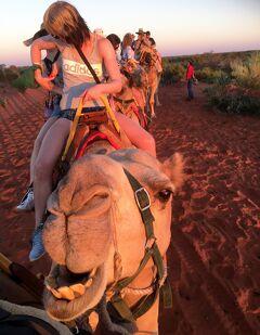 メルボルン→ウルル夫婦旅行5日目(Uluru Camel Sunset)