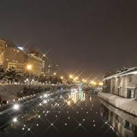 2018年 北海道 さっぽろ雪祭り & 雪あかりの路(4日目)4/4 (雪あかりの路:芸術村&運河会場)編