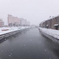 雪を求めて北海道[中] 小樽サバイバル