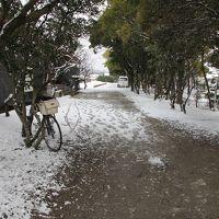 雨と雪の九州