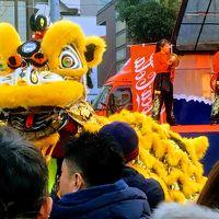 横浜日本大通りでスズメと戯れ、横浜中華街春節で獅子舞や中国雑技を満喫