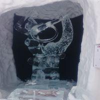 栃木県 奥日光で雪見露天風呂と素敵な夜 (6-3) 氷彫刻大会を見学