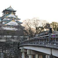 大阪冬の陣(1)