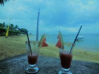 避寒、バリ島へ(サヌールをジャランジャラン)