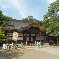 2017年6月 川崎と東京西部散策(2) 調布と府中