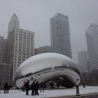 酷寒シカゴ必死の満喫日記 その�雪のシカゴ必死の街歩き、晩ご飯難民、そして帰国篇