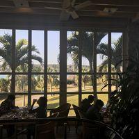 沖縄家族旅行:ANAインターコンチネンタル万座ビーチリゾート、牧志公設市場、古宇利島、万座毛