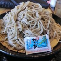 信州ゆこゆこお湯旅・その1. えっ?新宿→長野が1500円!高速バスで信州へ行こう。