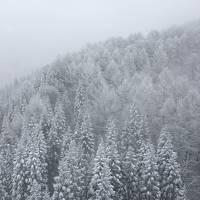 わざわざエンブラエルに乗って行く1泊2日山形 �初日、吹雪で樹氷観賞どころではなかった蔵王とちょっとだけ山形市内散策