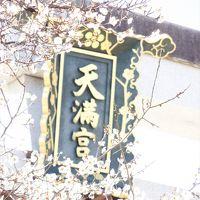 2018年3月 京都に春が来てます(梅)� 梅にも色々あるんですねver