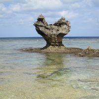 沖縄旅行 2(沖縄本島北中部)