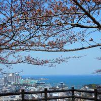 2017年京都 4月4日 その3 京都定期観光バスで三井寺でランチと参拝