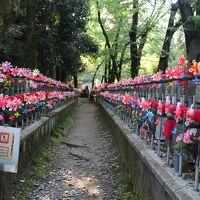 【長旅】全国津々浦々 きまま旅*その3&4〔神奈川・東京〕スパと飲みと都内社寺ぶら歩き