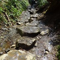 �高尾山健康登山(14) (リフト)−高尾山山頂ー6号路