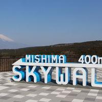 富士山を見に静岡へ