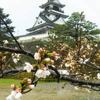 四国バースデー切符の旅:高知編