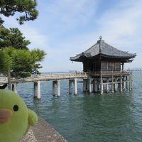 滋賀県 大津と守山をたびするトリ