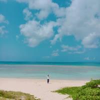 春の石垣〜波照間島