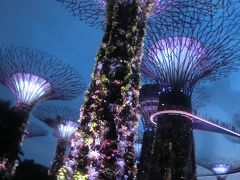 孫とシンガポール(2/4 No.2 シンガポールエクスプローラーパス:チャイナタウン〜ガーデンズバイザベイ)