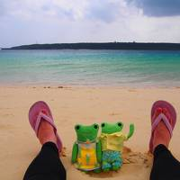 うりずんの沖縄へ2週間の1人旅 12