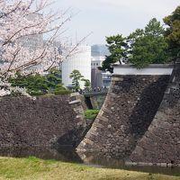 皇居乾門通り抜け。そして千鳥ヶ淵と靖国神社。桜の三種盛り。