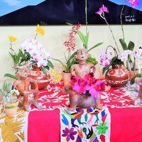 世界らん展-6 大使・大使夫人のテーブル・ディスプレイ ☆母国の風土伝統を反映して